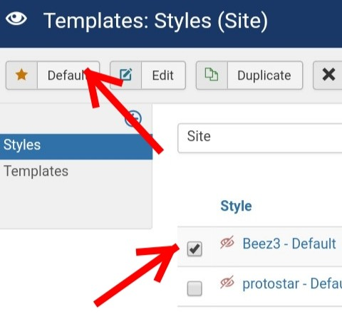 Set Template Style to Default